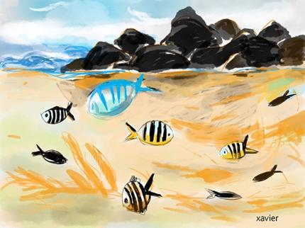 Découvrir île Maurice, bain dans le lagon entre les coraux et les poissons exotiques, croquis de voyage,